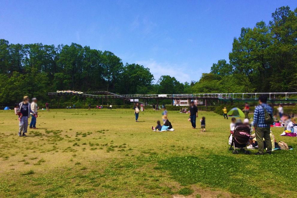 辰口丘陵公園の芝生