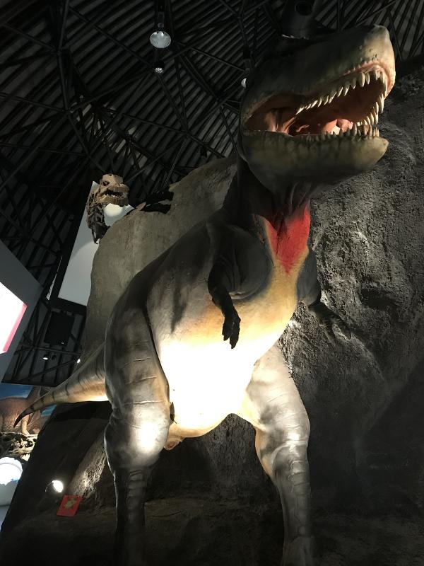 白山恐竜パーク白峰 ティラノサウルス