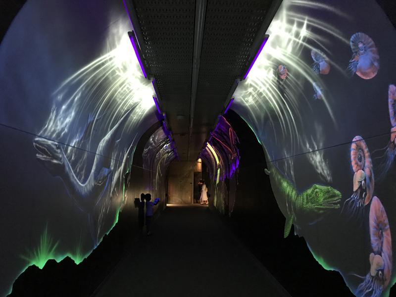 白山恐竜パーク白峰トンネル