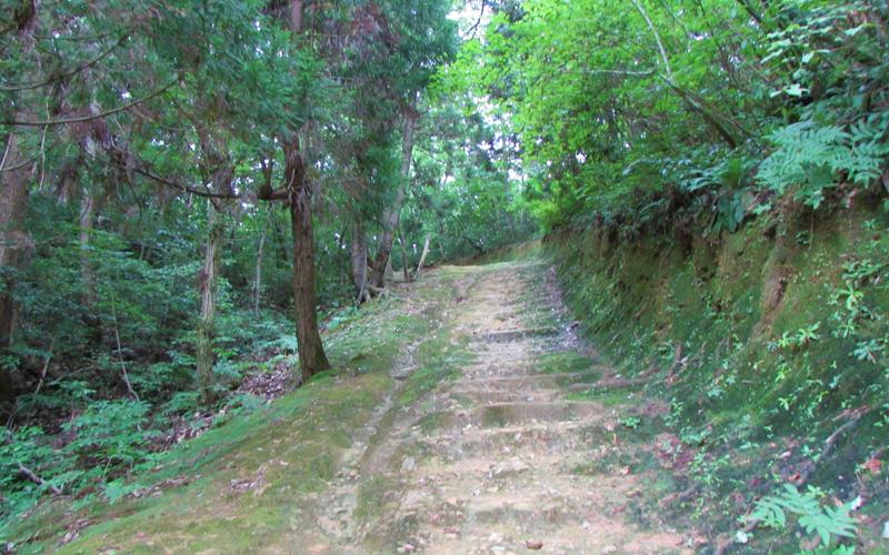 ハニベ巌窟院 階段