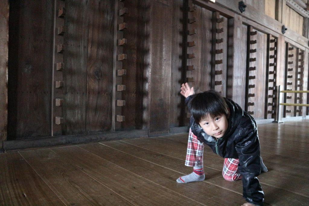 姫路城でゲッコーガポーズ